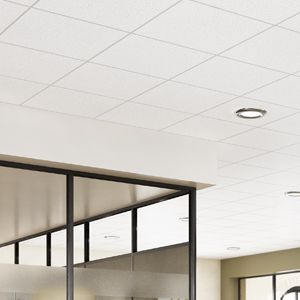 General Purpose Ceilings Tiles